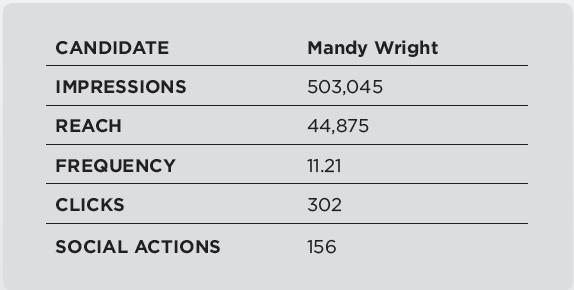 2014 General Election Metrics